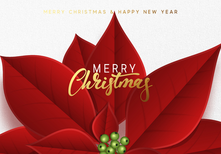 Merry Christmas, background decorated with beautiful red buds poinsettia flowers. Imagens - 109267644