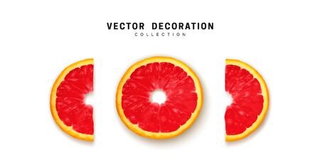 Set of fresh ripe, slices flat view. half cut red grapefruit. Realistic vector isolated on white background.