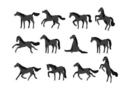Satz Vektorpferde lokalisiert auf weißem Hintergrund. Sammlung reinrassiger Vollblutpferde im flachen modernen Stil. Vektorgrafik