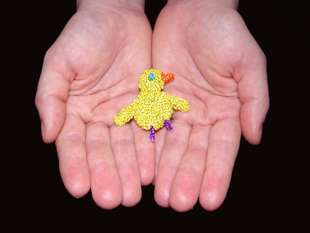 The self-made duckling from multi-coloured polyfoam lies in palms                                photo