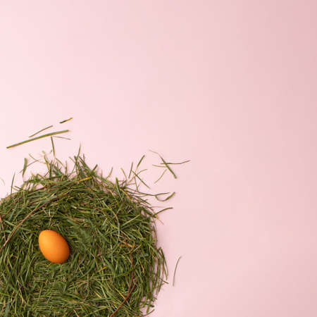 Easter orange egg in nest on a pink background. Flat lay.