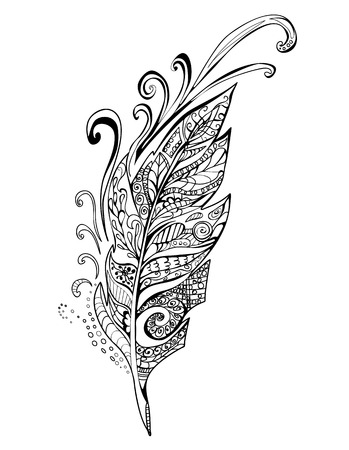 feather quill: Hand drawn Doodle feather birds, vector illustration