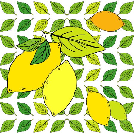 Seamless pattern with drawn lemons. Tropical summer citrus fruit engraved style background. Vector illustration for web design or print.