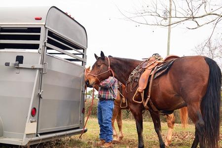 Man cowboy leidt zijn paarden van veld naar paardenkoets. Landelijk, platteland