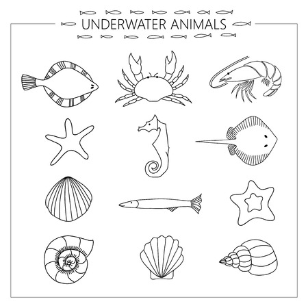 flounder: Black and white vector drawing of underwater animals. Illustration