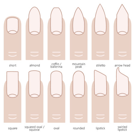 fingernail: Different nail shapes - Fingernails fashion Trends. Vector illustration. Illustration