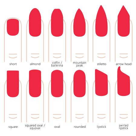 種類の爪形状爪ファッションのトレンド。ベクトルの図。
