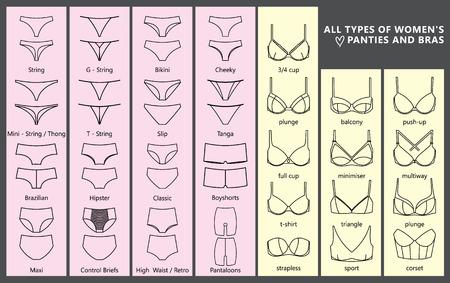 Tous les types de culottes et soutiens-gorge pour femmes. Types de sous-vêtements féminins. Vecteurs