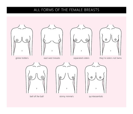 Types of women's Breasts. All forms of the female Breasts. Shapes of the female Breasts. Vector.