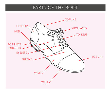Shoe parts in vector. Parts of the boot.