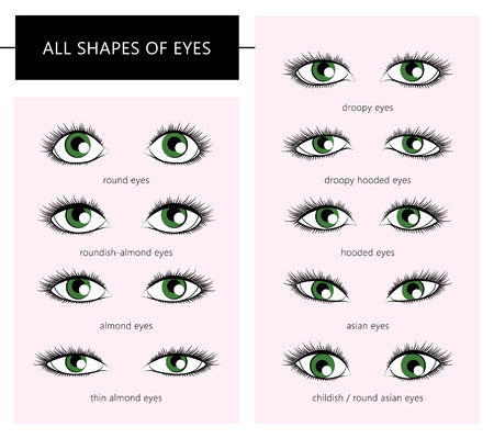 droopy: Set of different types of eyes for use as design aids. All shapes of eyes. Forms of woman eyes. Vector illustration. Stylish make up. Vogue beauty article, magazine, book. Vector set.