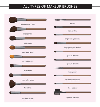 All types of makeup brushes. Vector set. Makeup brushes kit.Iisolated. Vector Set of Clean Professional Makeup Concealer Powder Blush Eye Shadow Brow Brushes with Handles Isolated on White Background
