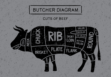 Poster Butcher diagram and scheme of meat steaks: brisket, shank, rib, plate, flank, sirloin, short-loin, rump, round, shank in vintage style drawing. Cut of beef.