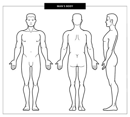 Vector illustration of mens body and man anatomy. Front, back side views. Outline Vector Illustration - Vector