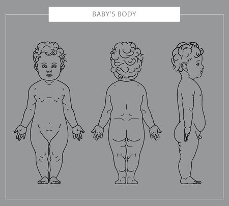 The body of a child drawn by a line. Front, side, back view. The body of the baby from different sides. Vector illustration. Foto de archivo - 132087473