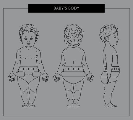 The baby's body in diapers is a front, side and rear view. Vector. Linear illustration. Фото со стока - 132087477