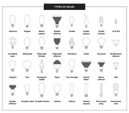 All types of bulbs in a gray outline: tubular, krypton, pear, ogive, globe, ellipsoidal, flambeau, bulged, candle, arbitrary, fluorescent. Flat set of light bulbs with names. Vector illustration.-Vector