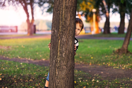 The boy hides behind a tree in the park. A child looks out from behind a tree, playing hide and seek on the street.