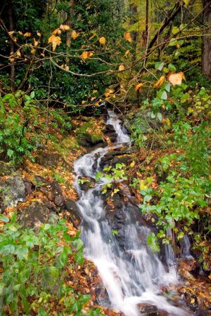 recent rainfall runoff small waterfall