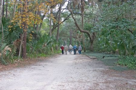 retired senior citizens traveling down a forest path
