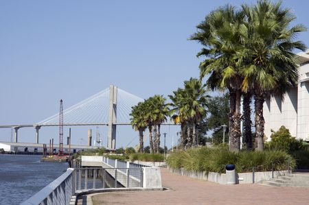 tropical walkway along the riverwalk near the convention center in Savannah GA