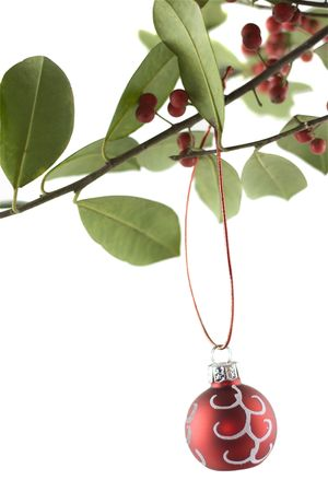red christmas ornament hanging from holly branch