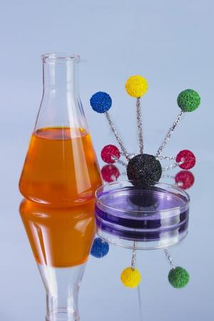 orange flask and petri dish photo