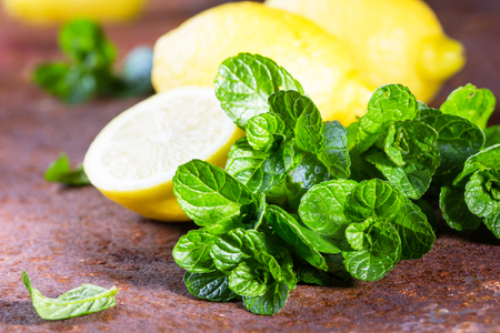 mohito: bunch of fresh mint with lemon. Ingredients for mohito or lemonade Stock Photo