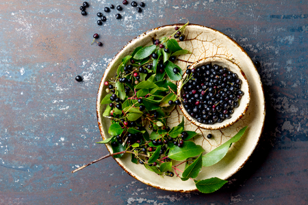 Superfood MAQUI BERRY. Superfoods antioxidant of indian mapuche, Chile. Bowl of fresh maqui berry and maqui berry tree branch on metal background, top view. Archivio Fotografico