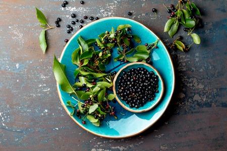 Superfood MAQUI BERRY. Superfoods Antioxidans der indischen Mapuche, Chile. Schüssel frischer Maqui-Beeren- und Maqui-Beerenbaumast auf Metallhintergrund, Draufsicht. Standard-Bild