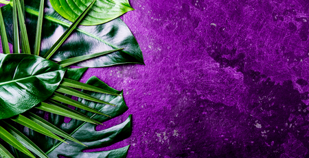 Creative tropical leaves background. Trandy tropical leaves on ultra violet slate background - color of the year 2018. Top view, copy space. Banner Stock Photo
