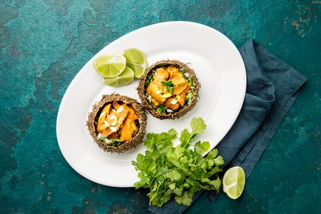 Fresh opened sea urchins. Caviar of sea urchins with onion, cilantro and lemon inside of shell of sea urchins. Top view