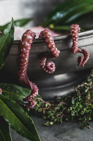 Close up of raw octopus tentacles and fresh herbs in metal pot.