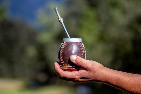 Man holding calabash yerba mate in nature. Travel and adventure concept. Latin American drink yerba mate Stockfoto