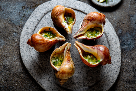 Chilean giant snails with butter, garlic and herbs on gray stone  plate. escargot from pacific ocean