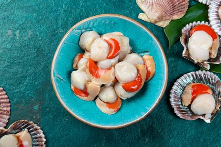 Raw fresh seafood shellfish scallops on blue background. Stock fotó