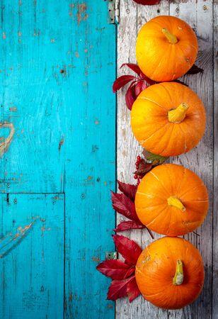 Autumn composition. Pumpkins on white blue background. Top view Imagens