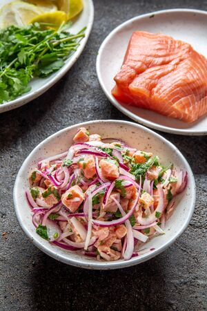 CHILEAN SALMON CEVICHE. Fresh raw salmon marinaded with purple onion, coriander in lemon juice. Sebiche and ingredientes on gray background. Top view. Stok Fotoğraf