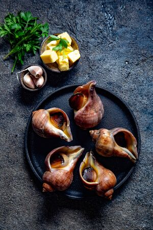 Raw ingredients giant ESCARGOT from Pacific ocean. Chilean big snails, butter, garlic and parsley 版權商用圖片