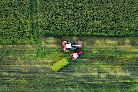 Aerial top view drone photography of a land with sown green fields in countryside.