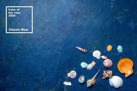 Trendy 2020 seafood blue classic background with sea shells. Color of year.