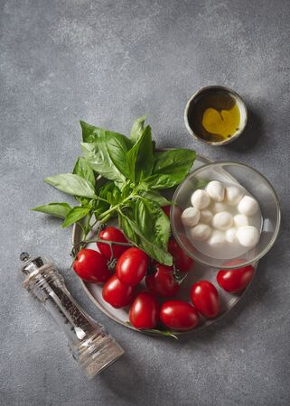 Caprese salad ingredients - tomatoes, cheese and basil