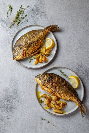 Grilled sea bream or dorada on gray plate. Gray background Banque d'images