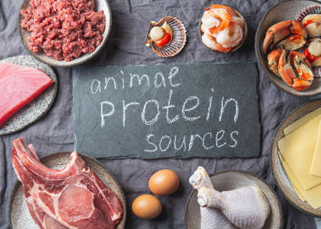 Animal protein sources background with copy space. Carnivore diet concept. Meat, cheese, fish, eggs and seafood Imagens