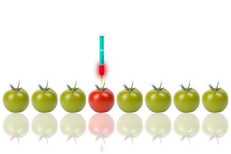 clonacion: Grupo de los tomates de genes Foto de archivo