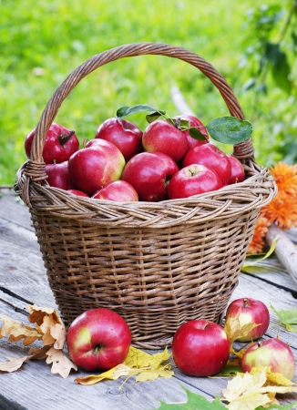 keep your health with organic apples photo