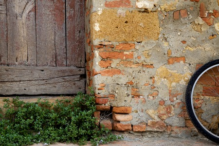 Tuscan scene with brick, wood door, plant and bicycle photo