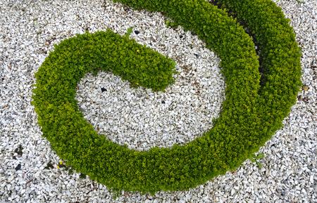 muster: Ornament in einem barocken Garten aus Steinsplit und Buchshecken; ornament in a baroque garden made from chips of stone and box hedges Stock Photo