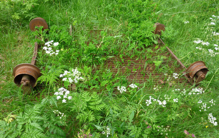 narrowgauge: rusty rail trolley of a narrowgauge railway lying in a flowering meadow Virserum Sweden Stock Photo