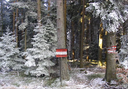 state boundary: State border with blackboard in wintry forest between Austria and the Czech Republic; state boundary with plate in the winter forest between Austria and the Czech Republic